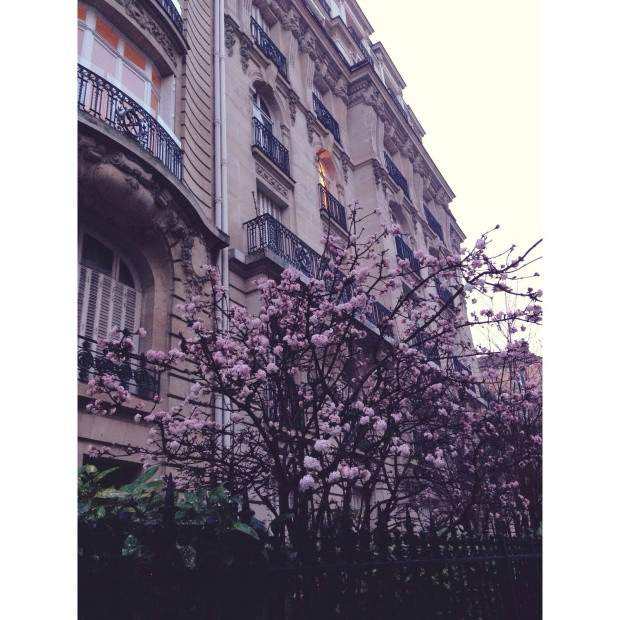 Olivia_ photography_ Paris 3