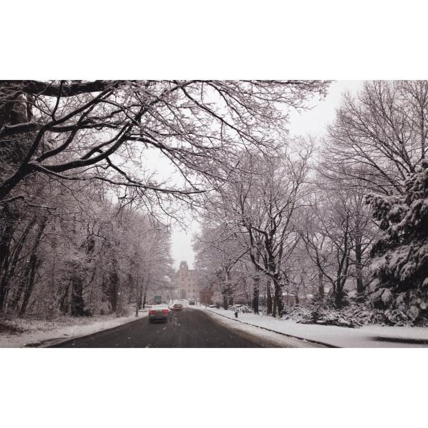 olivia_snow