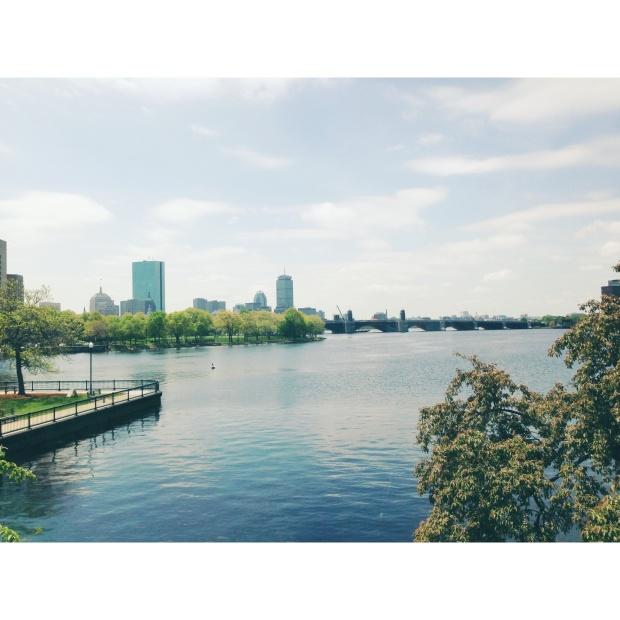 boston_ olivia