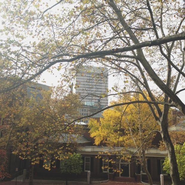 east side fall scene 1