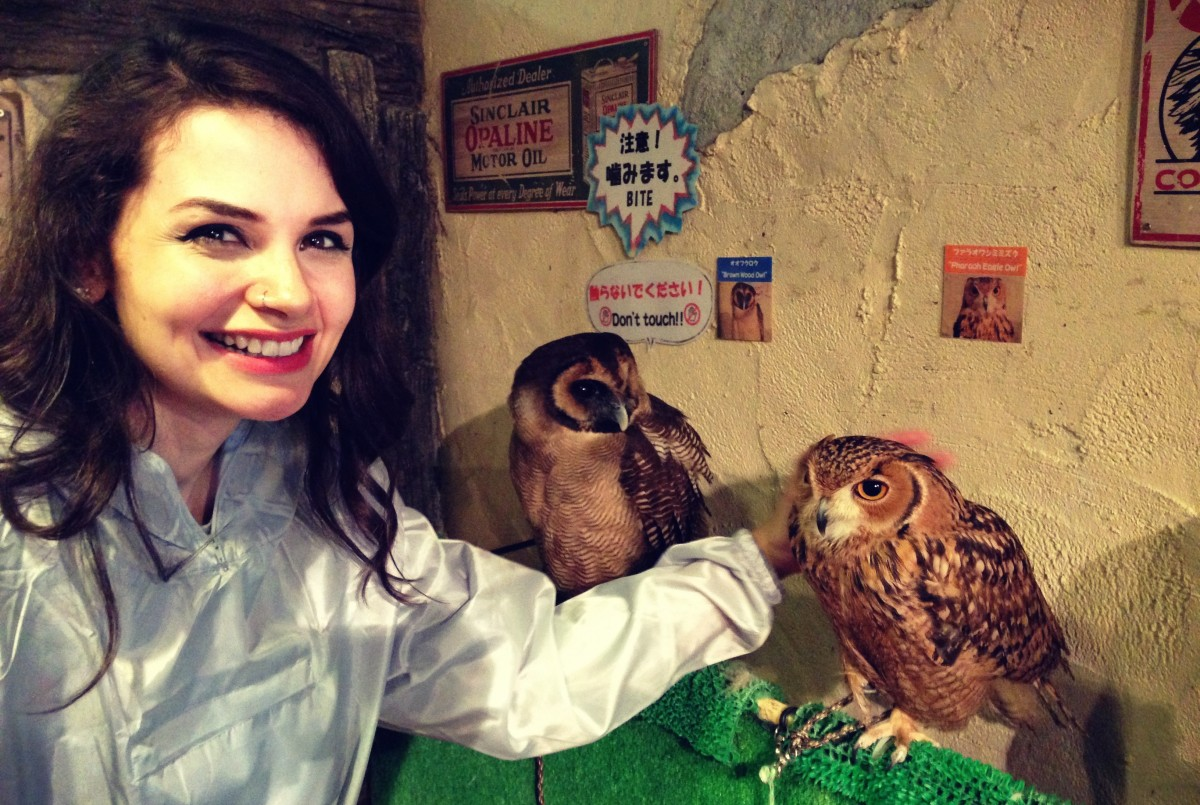MY TRIP TO JAPAN! PART 4: Owl Cafe Asakusa
