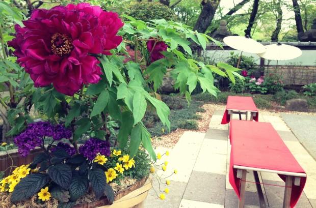 Flower Garden_13