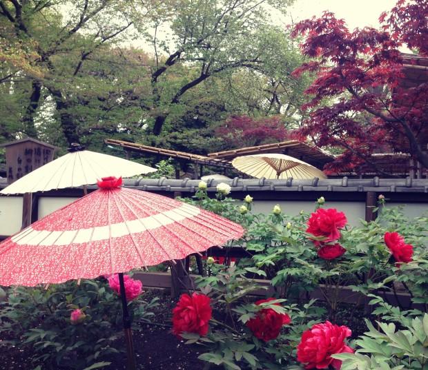Flower Garden_16