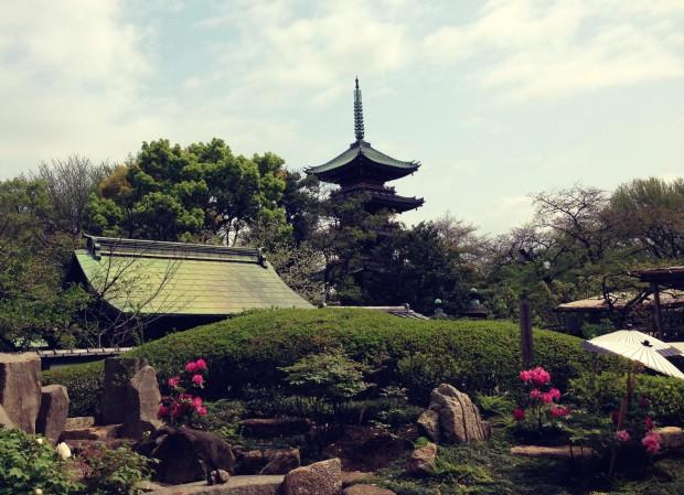 Flower Garden_18