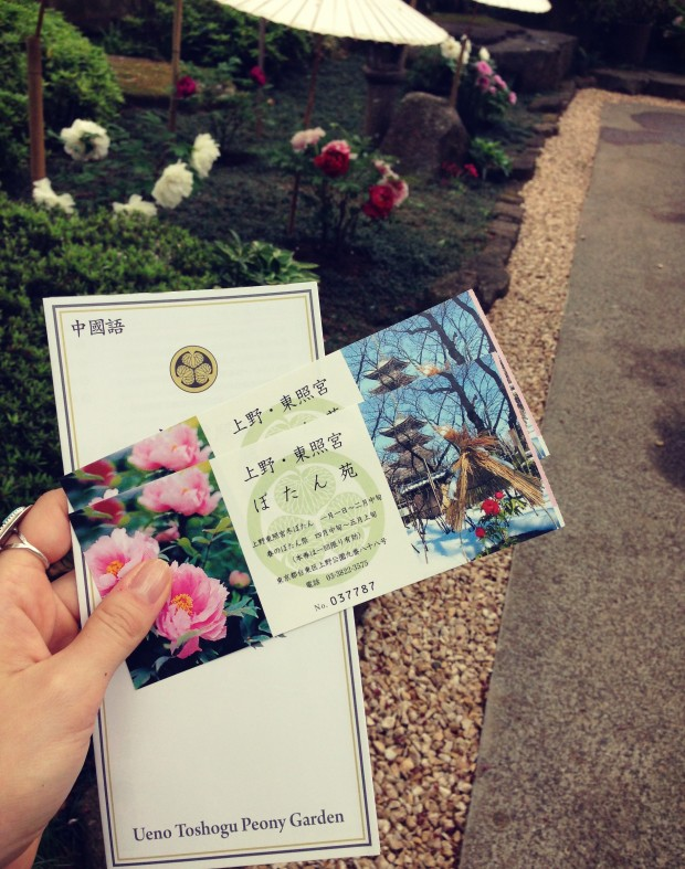 Flower Garden_4