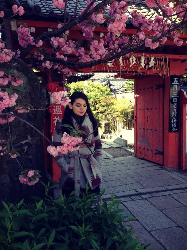 Kyoto_ 1