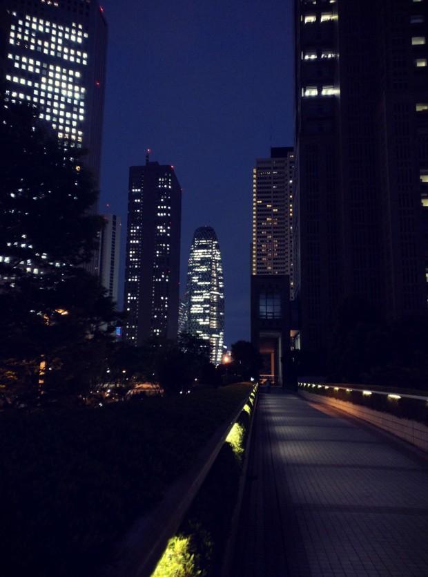 Park Hyatt 8