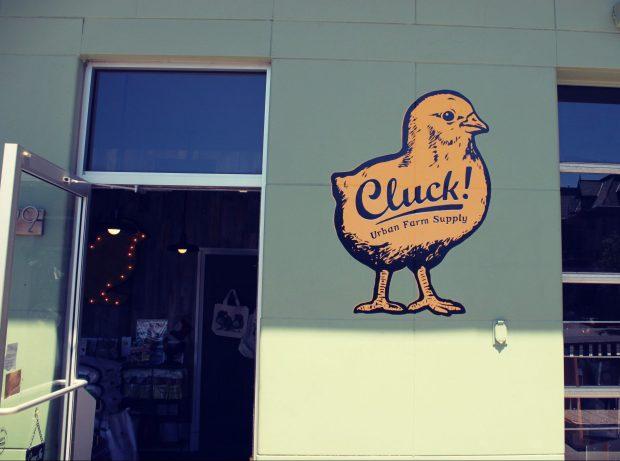 Cluck 3